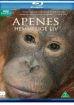 The-secret-life-of-primates