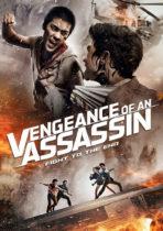 Vengances-of-an-assassin